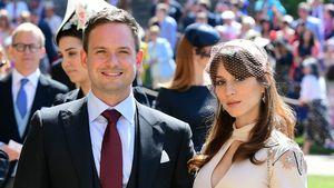 Fans sicher: Patrick J. Adams' Frau schwanger auf Hochzeit