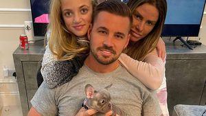 Katie Price hat einen neuen Hund – und erntet heftige Kritik