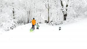 Schweden-Prinzen Gabriel & Alexander mit Papa im Schnee