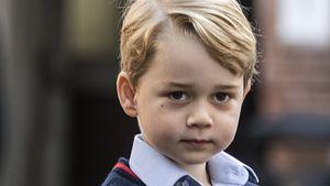 Im Schul-Theaterstück: Prinz George brilliert als Schaf!