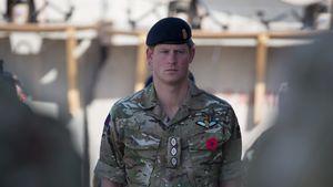Prinz Harry beim Militär
