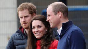Nachwuchs: Kates 3. Baby verdrängt Prinz Harry in Thronfolge