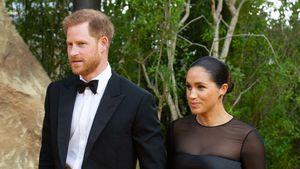 Briten finden: Harry und Meghan sollen ihre Titel abgeben