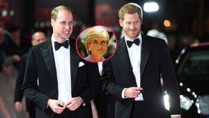 Getrennte Wege: William und Harry teilen Dianas Fonds auf