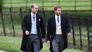 Prinz Harry bei Pippas Hochzeit: Aber wo ist seine Meghan?