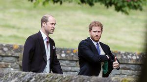 Vor Beerdigung: Haben Prinz William und Harry telefoniert?