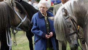 Nach Philips Tod: Die Queen lenkt sich mit ihren Pferden ab