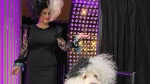 Als Cruella de Vil: Rebel Wilson im Partnerlook mit Hund