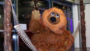 Samson feiert 40 Jahre Sesamstraße!