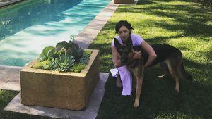Nach Krebsheilung: Shannen Doherty geht's endlich wieder gut