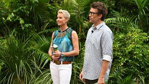 RTL wehrt sich: Dschungelcamp nicht komplett abgesagt
