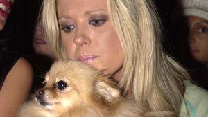 """American Pie""-Star Tara hat lieber Hunde- als Männer-Dates"