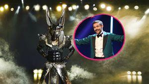 """Indizienvideos: Ist Klaas echt """"The Masked Singer""""-Anubis?"""