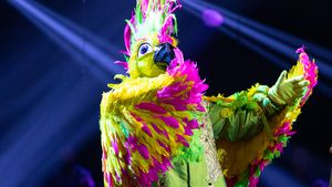 """""""The Masked Singer""""-Aus: Dieser Promi war der Kakadu!"""