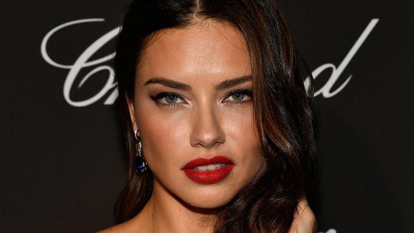 Adriana Lima, Model