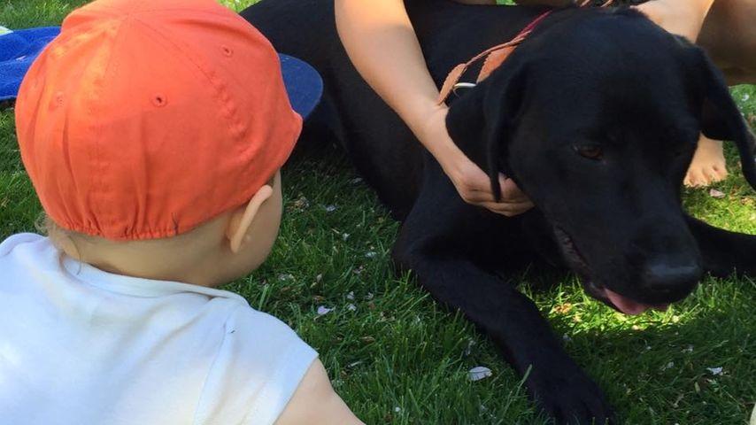 Niedlich! Alessio Lombardi kuschelt mit tierischem Freund