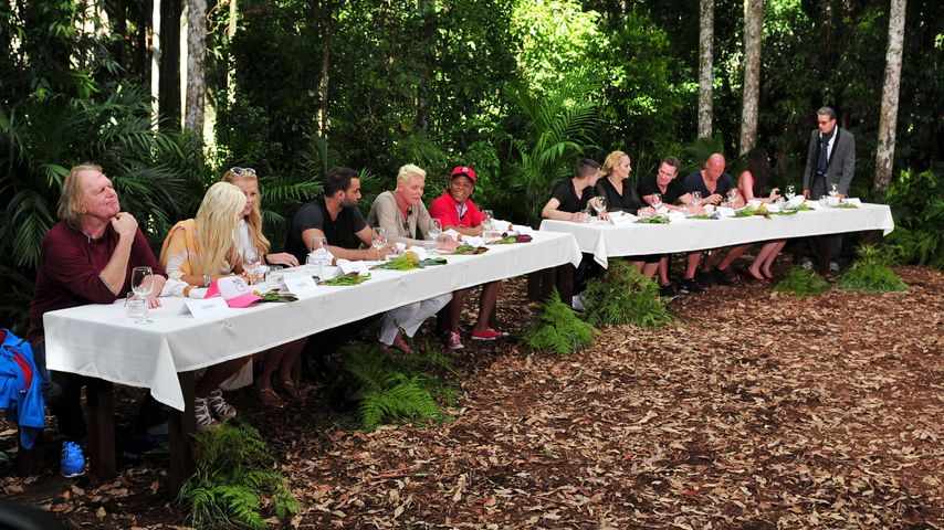 Erstes Dschungel-Ranking: So beliebt sind die Camper