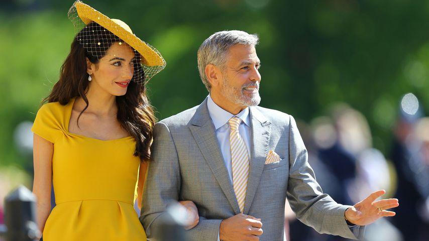 """George Clooney: """"Ich habe Bong-Wasser getrunken!"""""""
