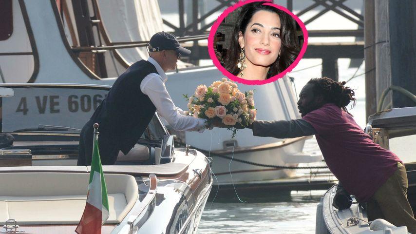 Clooney-Hochzeit: DAS sind die Blumen für Amal