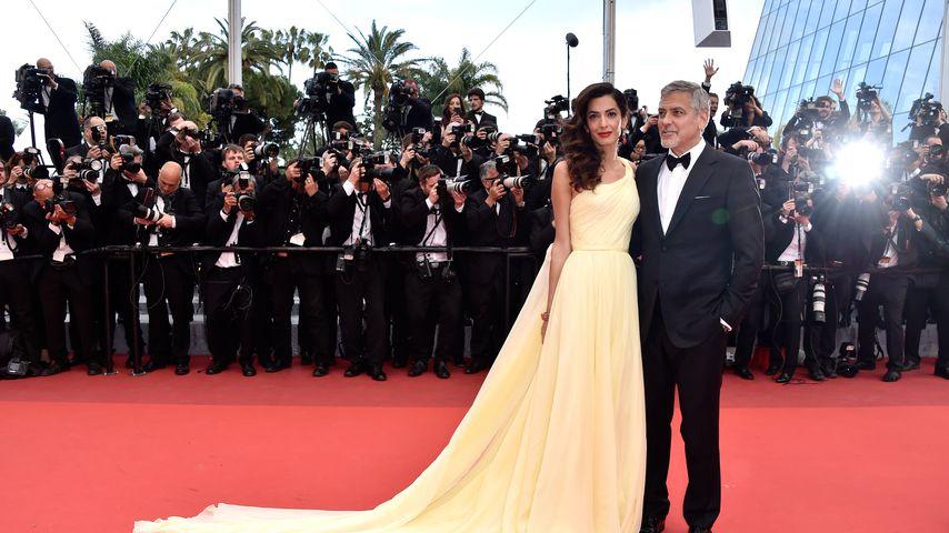 """Amal und George Clooney bei der """"Money Monster""""-Premiere 2016"""
