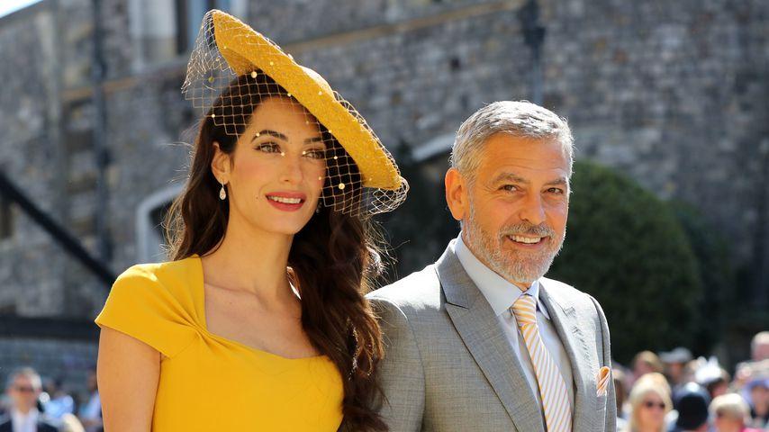 Amal und George Clooney in Windsor