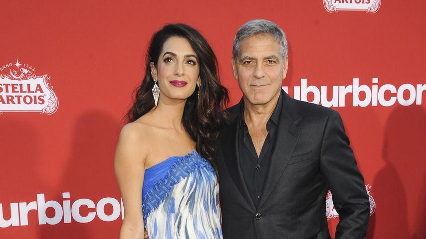 George & Amal Clooney: Sie spenden 500.000 Dollar!