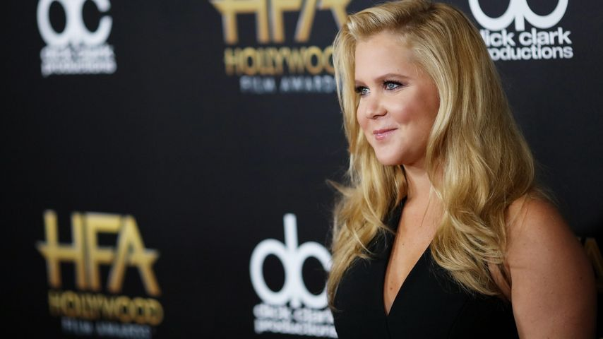 Amy Schumer bei den 19th Annual Hollywood Film Awards