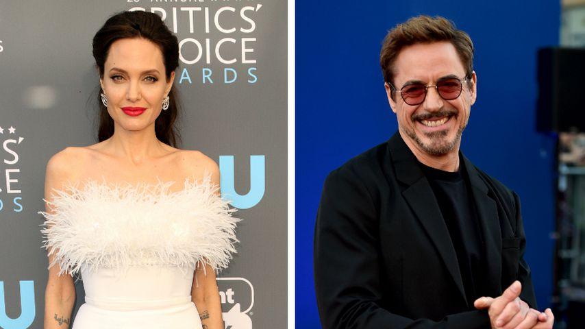 Nach Brad: Steht Angelina Jolie auf Robert Downey Jr.?