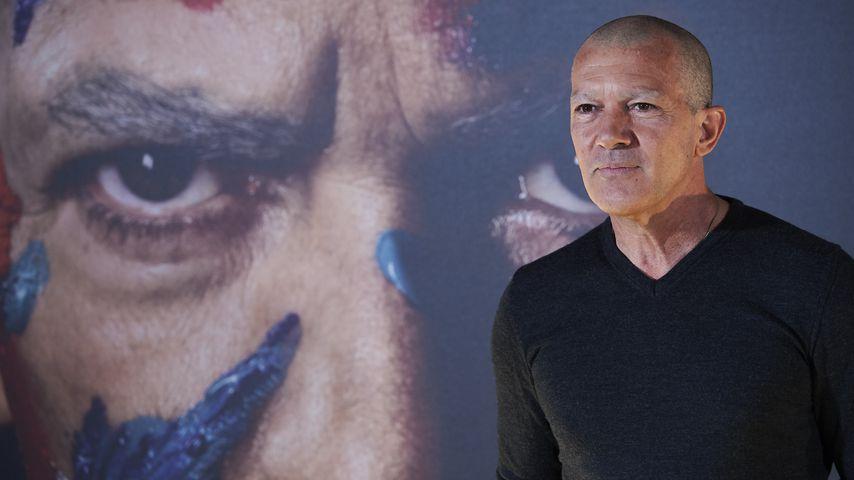 """Antonio Banderas beim """"Genius: Picasso"""" Photocall in Madrid"""