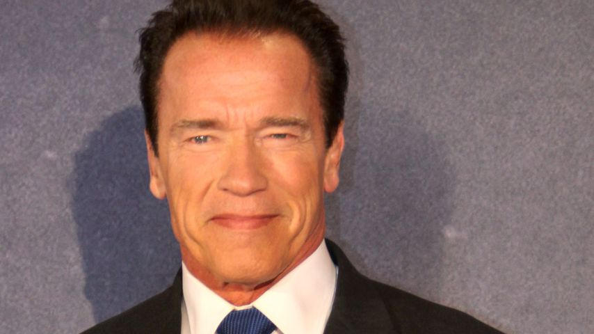 Arnold Schwarzenegger geht bald auf Zombie-Jagd!