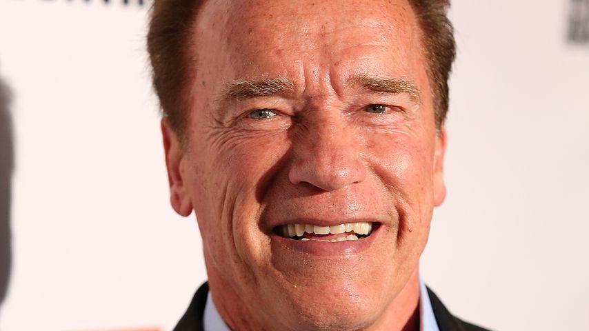 """Arnold Schwarzenegger bei der """"Killing Gunther""""-Premiere 2017"""