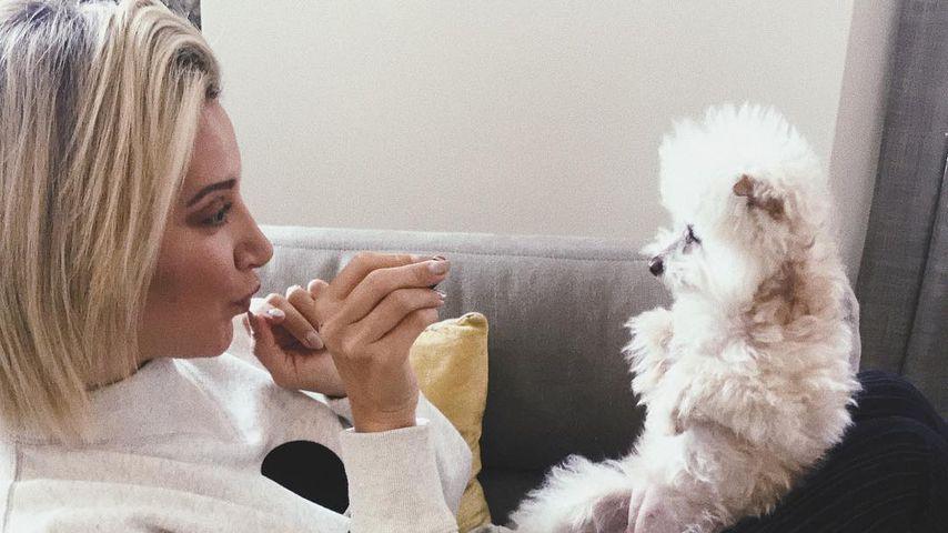 Ashley Tisdale mit ihrer Hündin Maui
