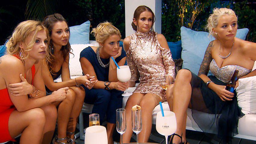 Bachelor-Kandidatinnen Michelle, Kristina, Janina Celine, Alina und Carina
