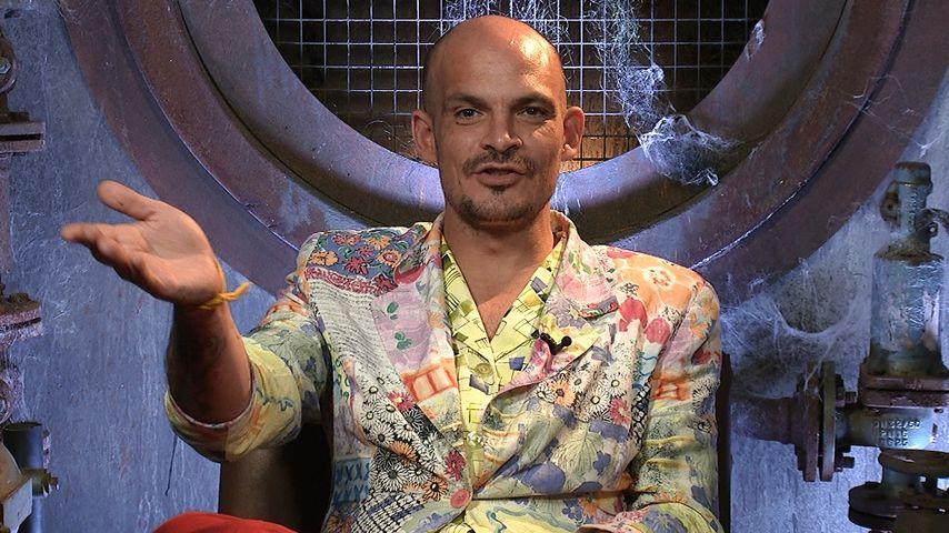 """Überraschung: Ben Tewaag gewinnt """"Promi Big Brother"""" 2016!"""