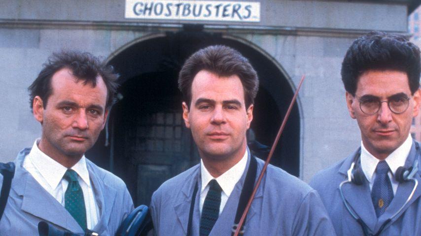 Harold Ramis (✝69): Ghostbusters-Kollegen trauern