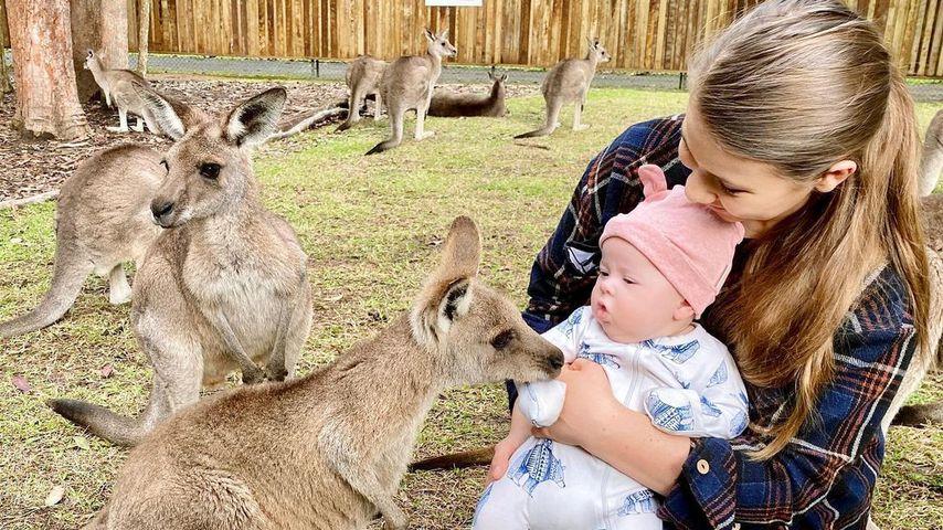 Hier trifft Bindi Irwins Baby Grace Warrior kleine Kängurus