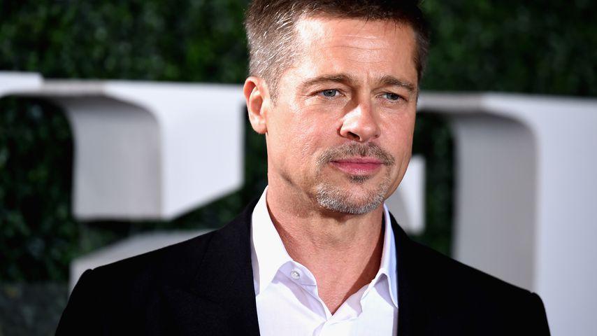 Nach Scheidung von Angelina: Brad will nie wieder heiraten!