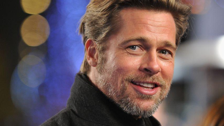 """Brad Pitt bei der """"Megamind""""-Premiere in Paris im November 2010"""