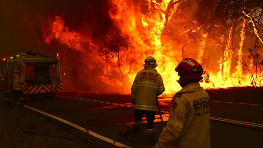 Buschbrände in Australien, Dezember 2019