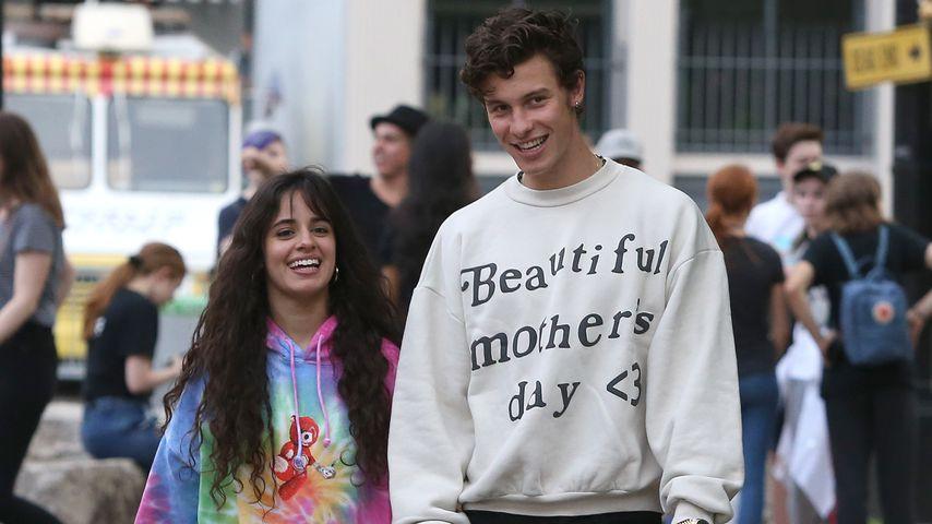 """""""Ich liebe dich"""": Camila Cabello und Shawn Mendes ein Paar!"""