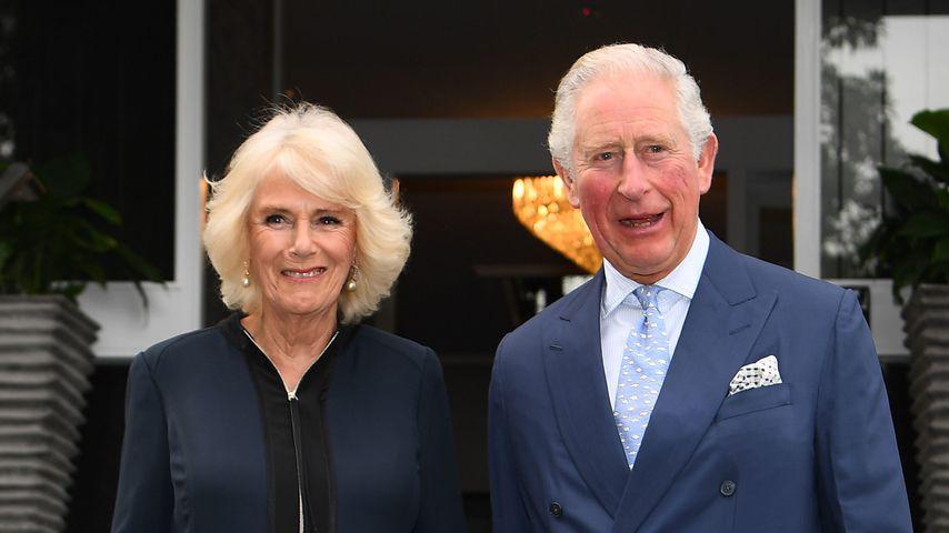 Haben Prinz Charles und Camilla echt einen geheimen Sohn?