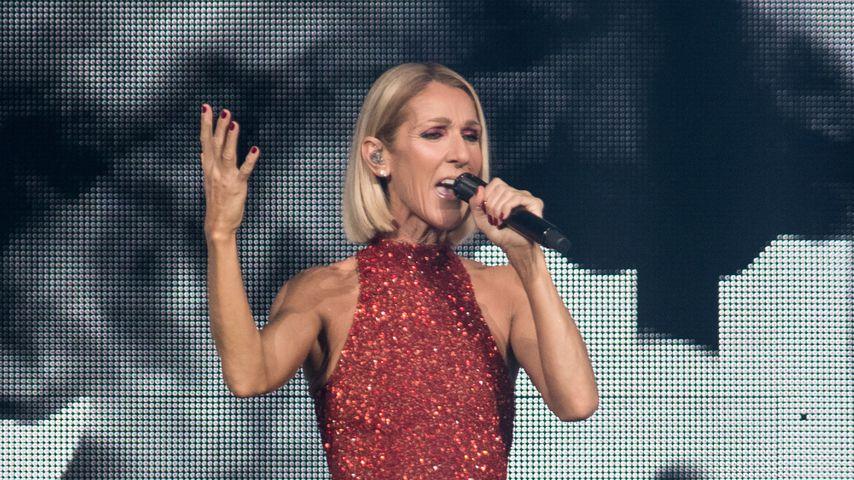 Celine Dion während eines Konzerts im September 2019