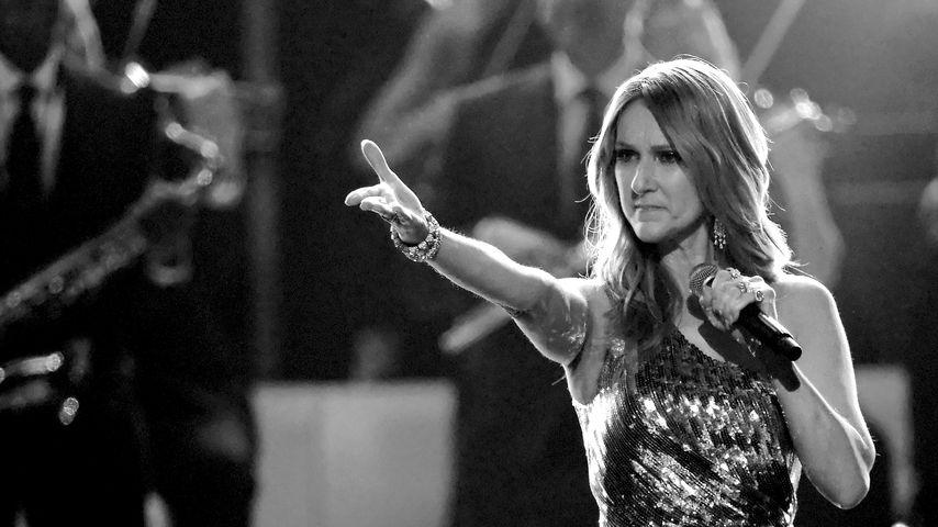 Für pinkelnden Fan: Celine Dion stoppte Abschieds-Konzert