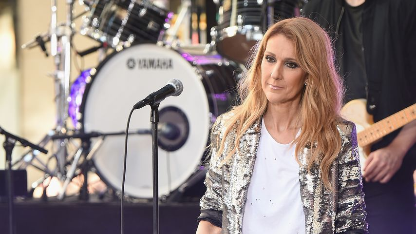 "Celine Dion in NBC's ""Today Show"""