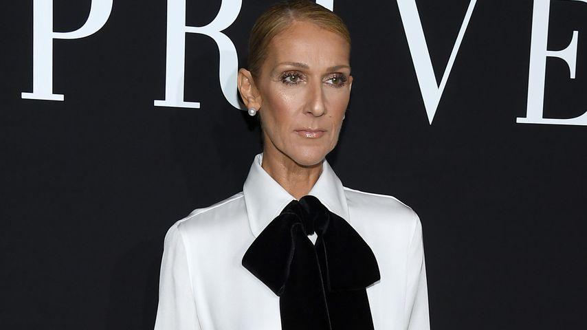 Neuer Mager-Post: Fans sorgen sich weiter um Celine Dion