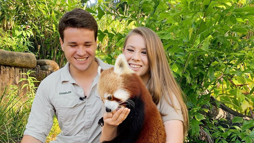 Chandler Powell und Bindi Irwin im Australia Zoo, 2020