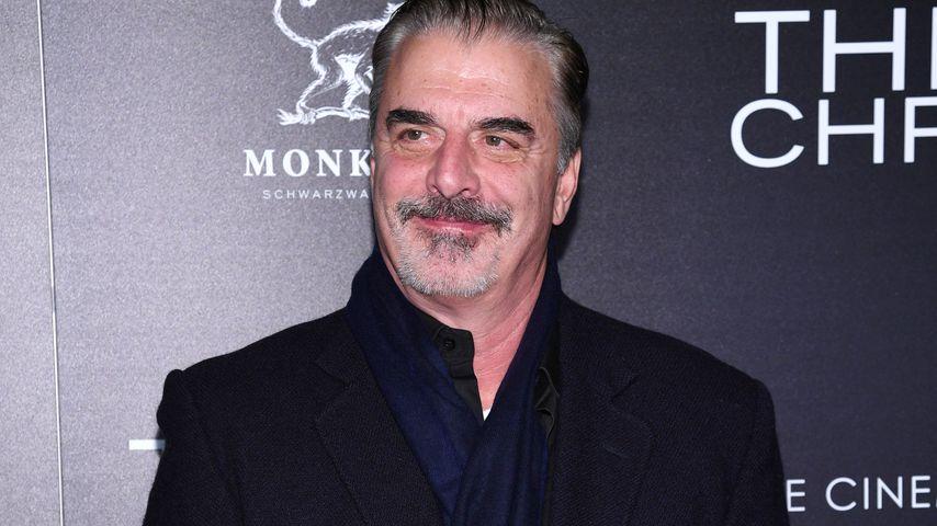 Chris Noth, Schauspieler