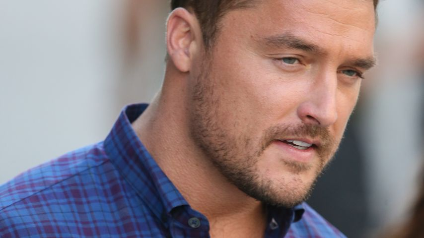 Chris Soules, TV-Star