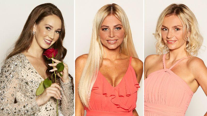 Nach Bachelor-Pleite: Hatten Christina, Jade & Co. Dates?
