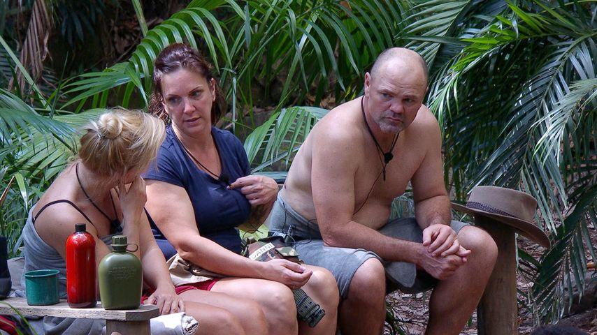 Claudia Norberg, Daniela Büchner und Sven Ottke im Dschungelcamp